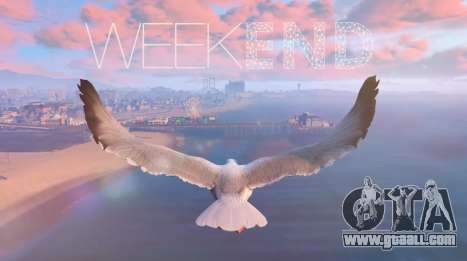 Videos from players in GTA 5: TOP of the week