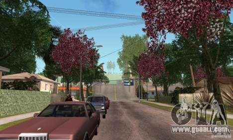 Green Piece v1.0 for GTA San Andreas forth screenshot