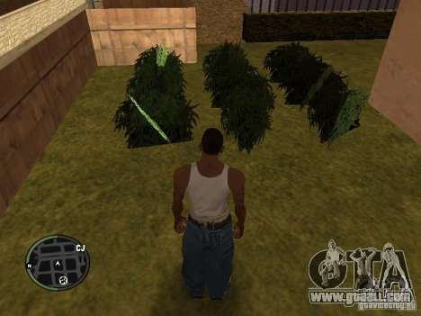Marijuana v2 for GTA San Andreas seventh screenshot