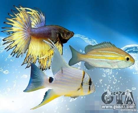 New fish (Ocean) for GTA San Andreas