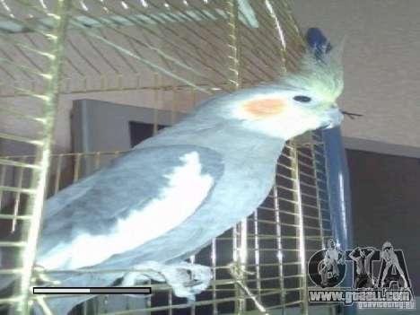 Boot screen Parrots Parrot beta for GTA San Andreas