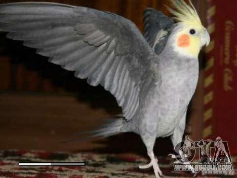 Boot screen Parrots Parrot beta for GTA San Andreas sixth screenshot