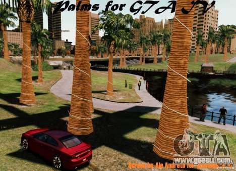 Palms for GTA IV for GTA 4