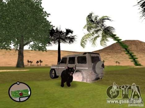 Animals in GTA San Andreas 2.0 for GTA San Andreas third screenshot