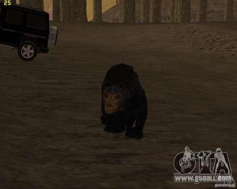 Bear for GTA San Andreas