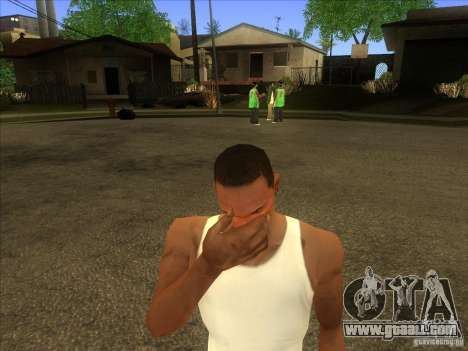 Facepalm Mod for GTA San Andreas third screenshot