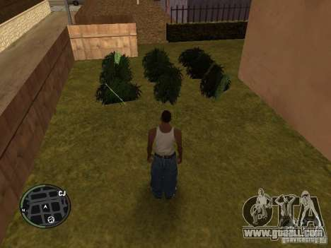 Marijuana v2 for GTA San Andreas sixth screenshot