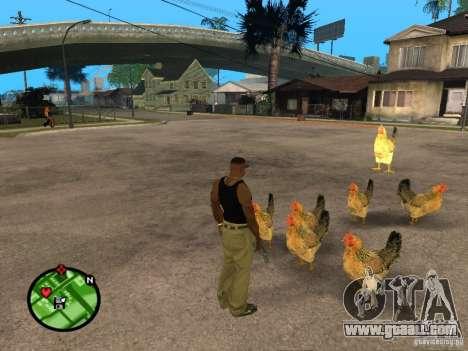 Chickens in GTA San Andreas for GTA San Andreas