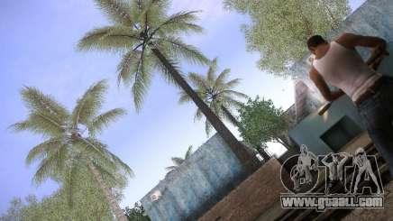 CamHack v1.2 for GTA San Andreas