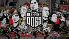 Boot screen Sleeping Dogs
