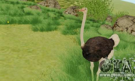 Ostrich From Goat Simulator for GTA San Andreas second screenshot