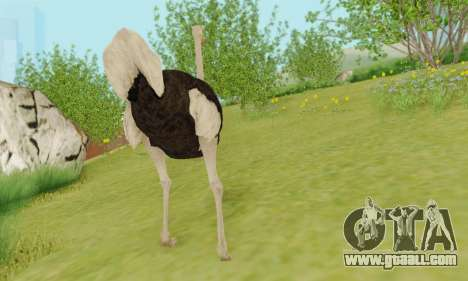 Ostrich From Goat Simulator for GTA San Andreas fifth screenshot