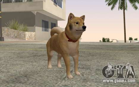 Dog for GTA San Andreas