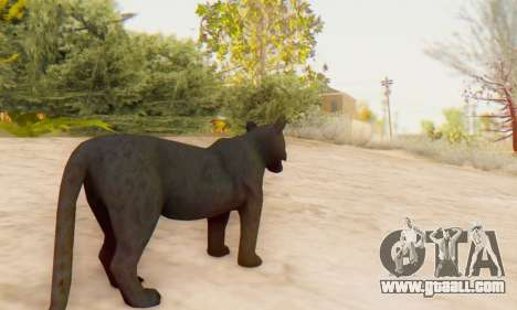 Black Panther (Mammal) for GTA San Andreas fifth screenshot