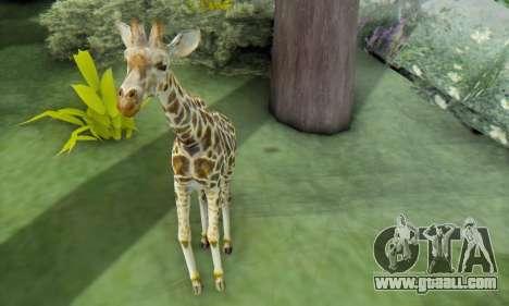 Giraffe (Mammal) for GTA San Andreas forth screenshot