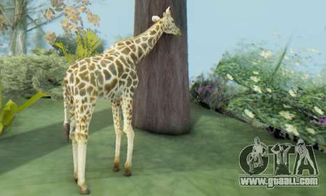 Giraffe (Mammal) for GTA San Andreas third screenshot