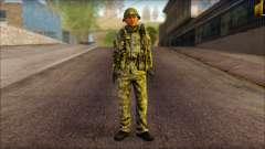 A North Korean soldier (Rogue Warrior)