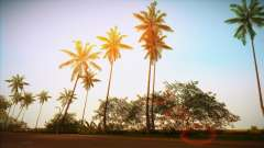 Vice ENB for GTA Vice City
