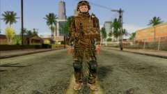 Soldiers of the U.S. Army (ArmA II) 2