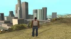Increase range of vectorization for GTA San Andreas