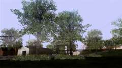 The texture of the trees from MGR for GTA San Andreas