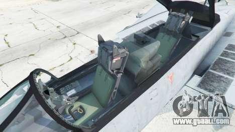 GTA 5 Grumman F-14D Super Tomcat Redux sixth screenshot