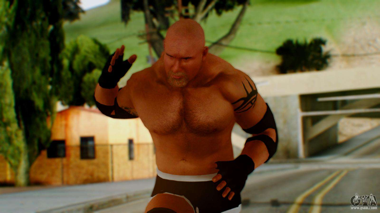 Auto Color Library >> Goldberg for GTA San Andreas