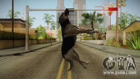 Silent Hill Downpour - DOG SH DP for GTA San Andreas