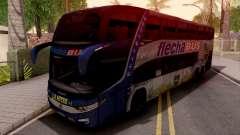 MarcoPolo Flecha Bus Boca Juniors