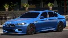 BMW M5 F10 ST